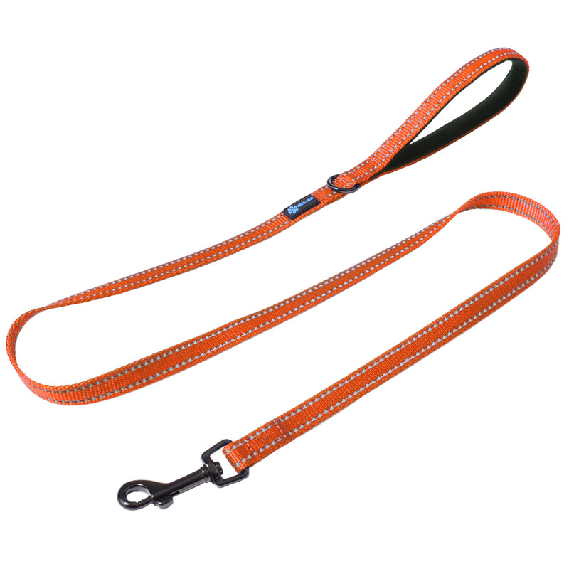 "4 FT x 5/8"" Wide Small Dog Nylon Reflective Dog Leash"