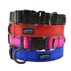 The NEO Dog Collar
