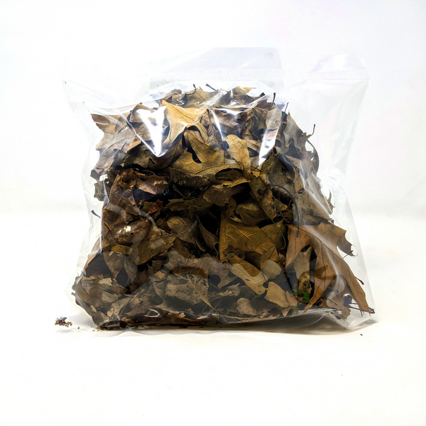 Mixed Oak Leaf Litter 2.5oz ( 4 Quarts )
