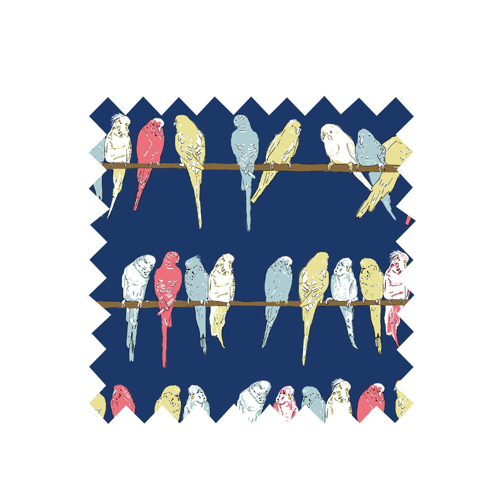 Navy Budgies Fabric - Orgnaic Cotton sateen