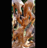 100cm Eagles sculpture,Heavy weight solid wooden carving - AsianWoodCraftUK