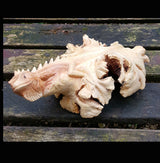 Parasite wood Medium Lizard Iguana Carving.Snake Ornaments UK - AsianWoodCraftUK