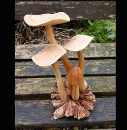 Flat Top Medium Wooden Mushroom Carving - AsianWoodCraftUK