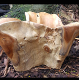 Carved Natural Teak Root Bowl,Planter - AsianWoodCraftUK
