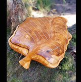 Carved Teak Root 40cm Leaf Box,Serving ,Tray,Serving Platter - AsianWoodCraftUK