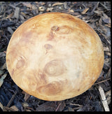 Solid Teak Root Single Small Smooth Top Mushroom - AsianWoodCraftUK
