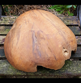 Carved Teak Root Natural Bowl Large - AsianWoodCraftUK