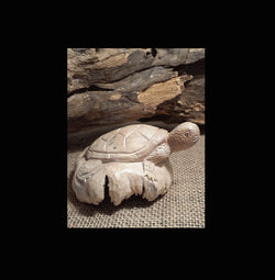 Parasite wood carved turtle - AsianWoodCraft.com