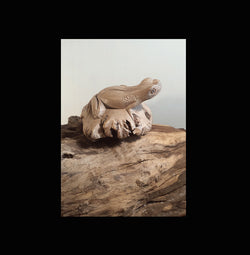 Parasite wood tropical frog carving - AsianWoodCraft.com