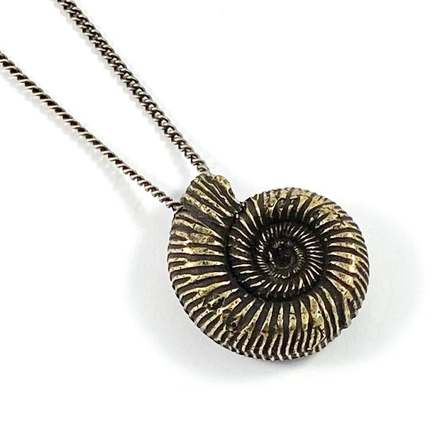 Organic Casting Collection - Ammonite Necklace