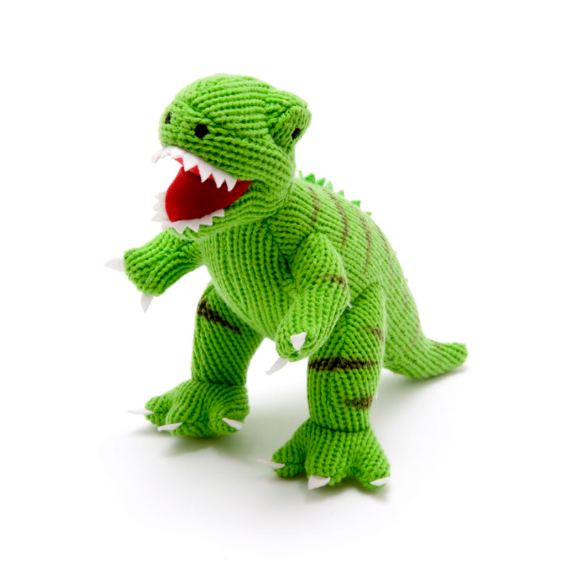 5 things...dinosaurs for your new baby