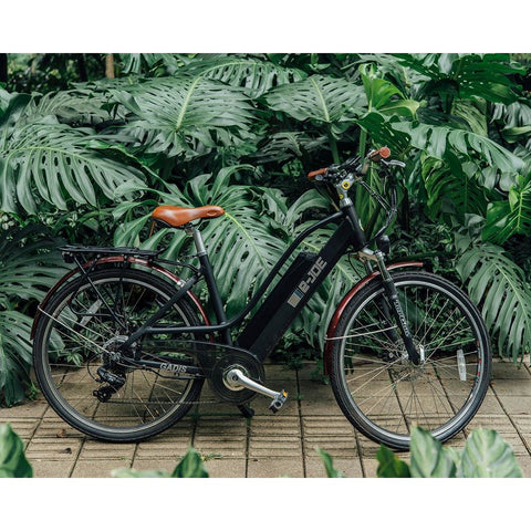 Midnight Black e-Joe GADIS Step Thru - Electric Cruiser Bike - In Front of Ferns
