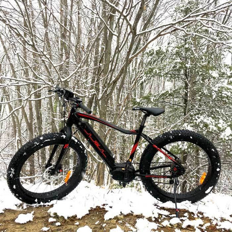 Fifield Rogue Wave - Electric Mountain Bike - On a snowy trail