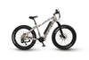 Image of QuietKat Apex - Electric Mountain Bike