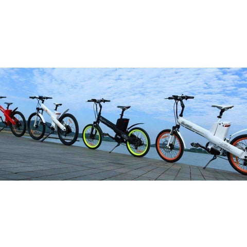 Collection of E-GO Electric Bikes back to back