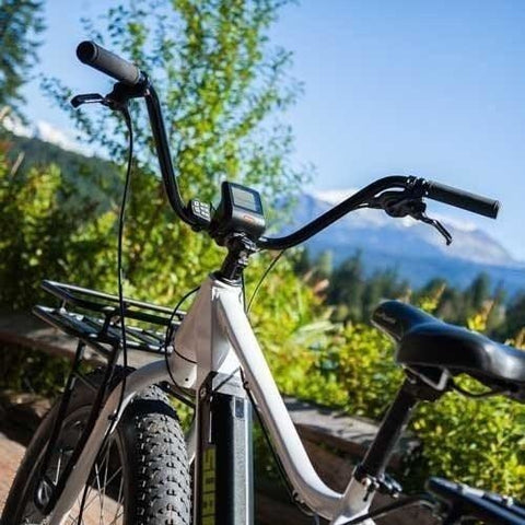 Surface 604 Boar - Fat Tire Electric Bike - Outside
