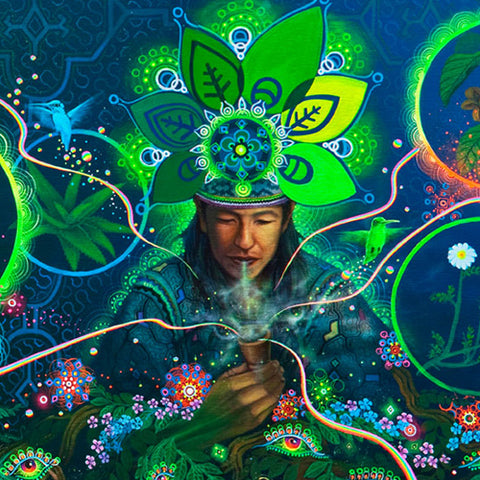 To the 8th Dimension - An Ayahuasca Tale