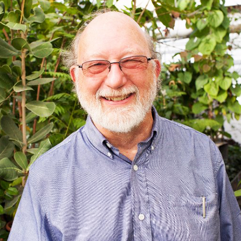 Throwing Down For The Plants with Dennis McKenna - AMP #108