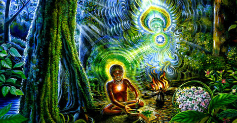 Ayahuasca Gave Me a Plan, with Jason Havey - AMP #75