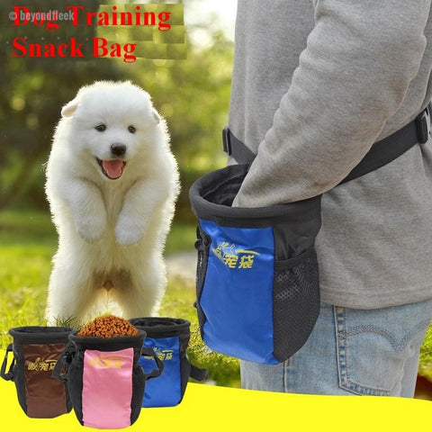 Detachable Dog Training Treat Pocket