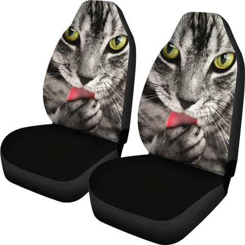 Image of Tabby Cat Car Seat Covers
