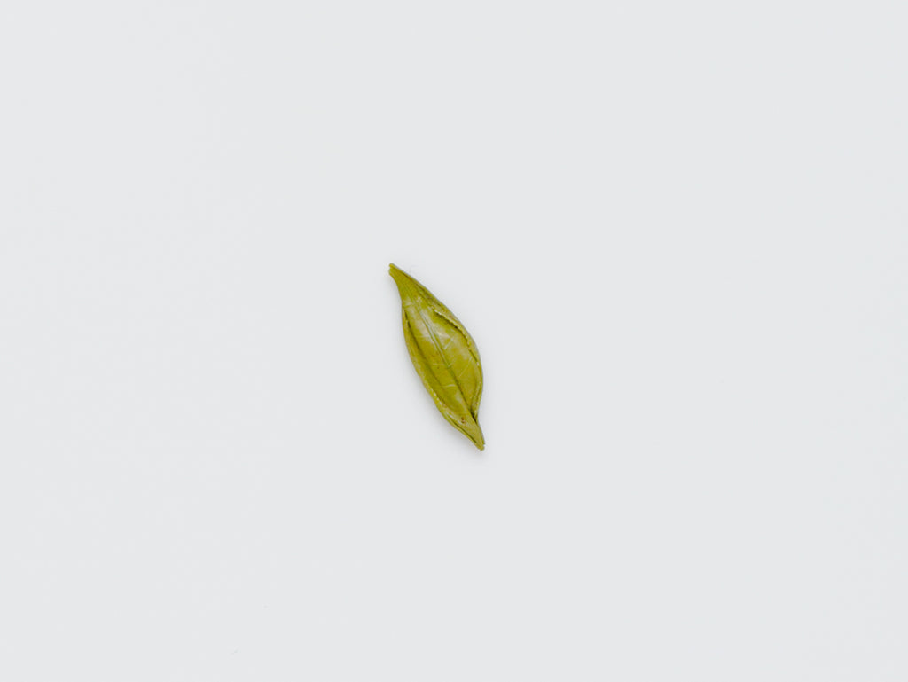 Fragrant Leaf