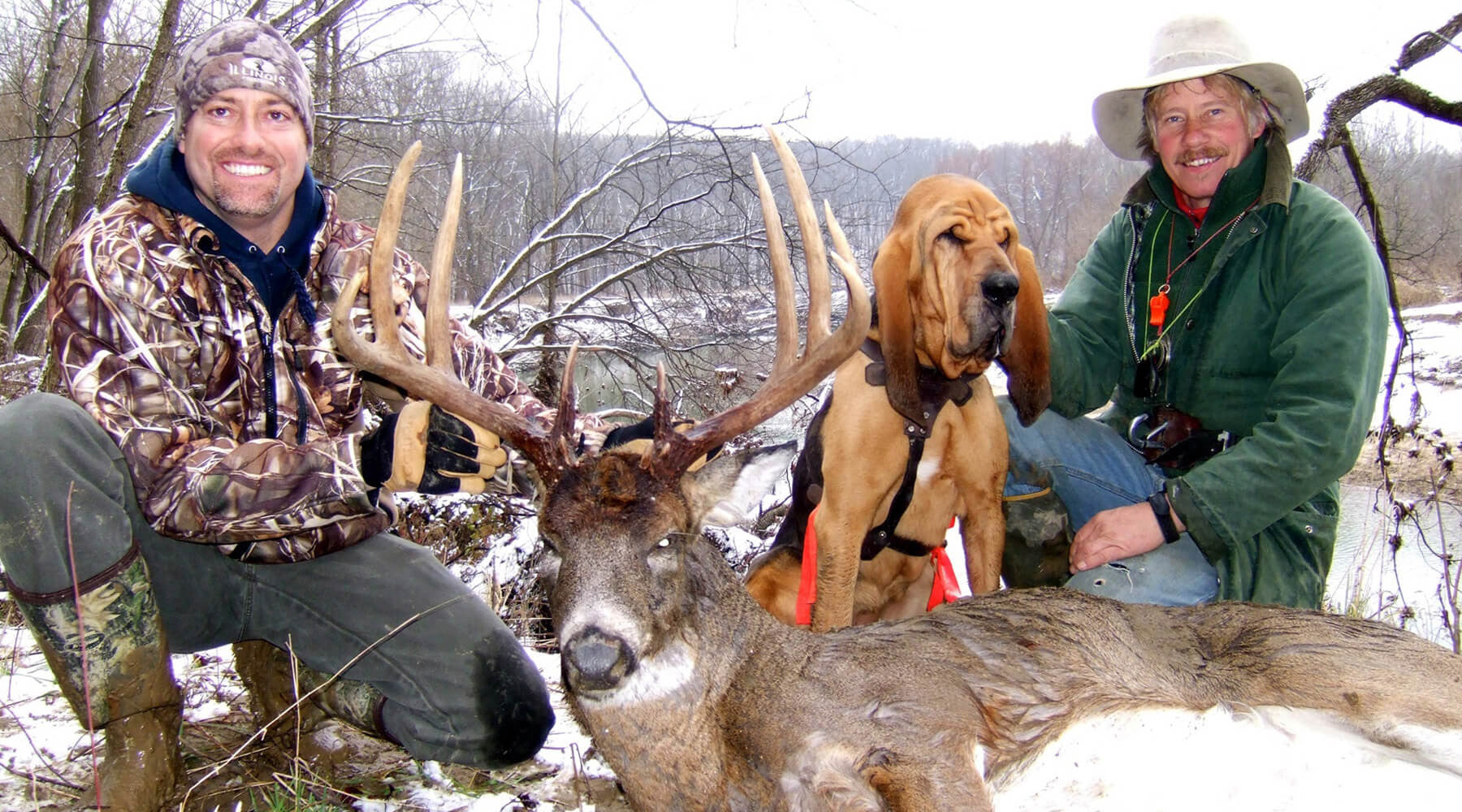Should You Hire a Blood Tracking Dog to Find Your Deer