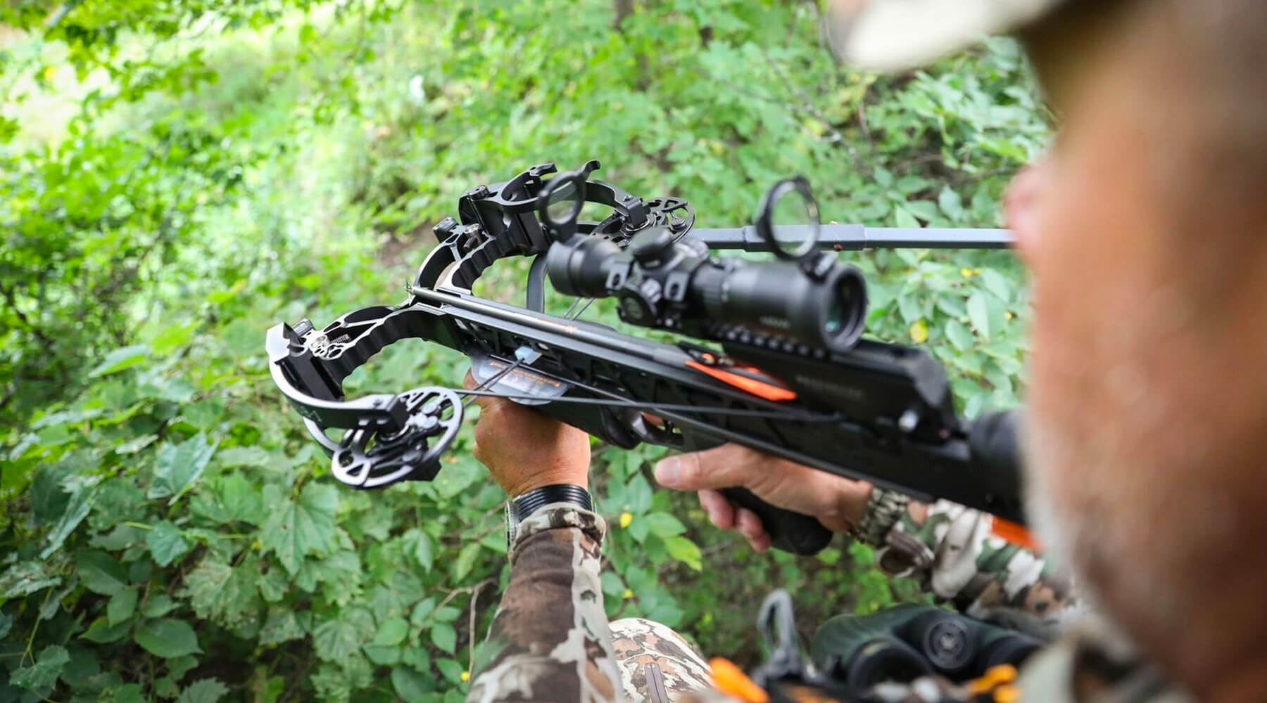 3 Crossbows To Check Out