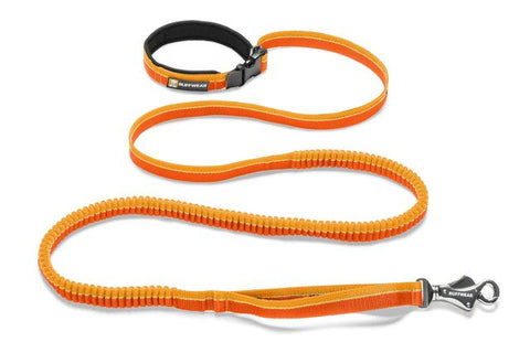 Ruffwear Roamer Leash: Orange Sunset