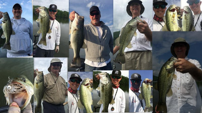 Swimbaits for Shad Spawn on Lake Guntersville