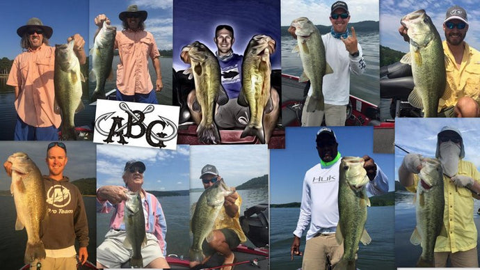 Ledge Fishing Guntersville 101 - June 2016