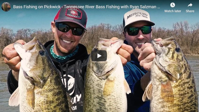 Bass Fishing on Pickwick - Tennessee River Bass Fishing with Ryan Salzman of Alabama Bass Guide