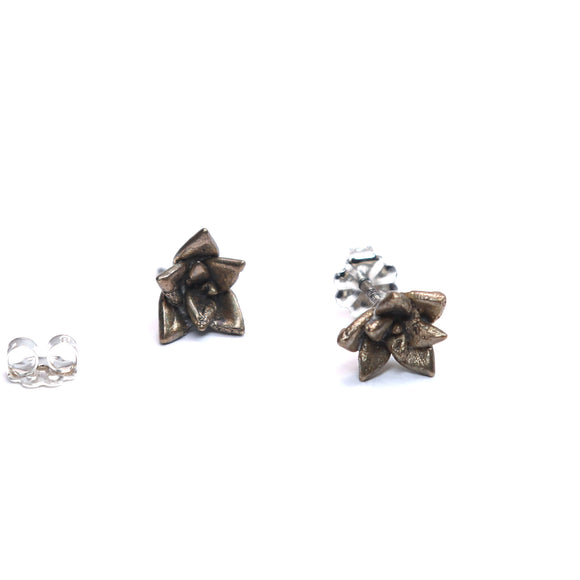 bronze echeveria floral succulent stud earrings
