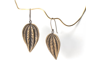 succulent earrings: leaf peperomia dangle in bronze for April