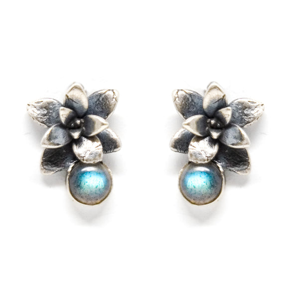 stone earrings: echeveria