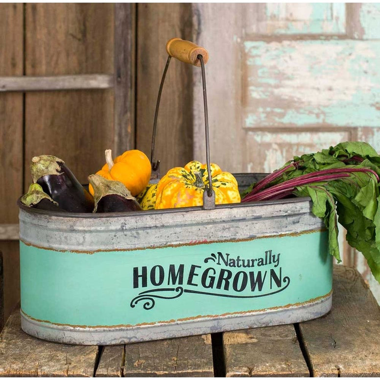 Galvanized metal bucket is a rectangular oval shape with a metal and wood design handle. Mint green stripes around the center of the bucket with the words in black.