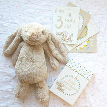 Load image into Gallery viewer, Jellycat Bashful Bunny Milestone Cards