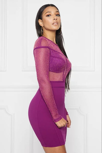 Glitter Mesh Longsleeve Binding Dress - Anew Couture
