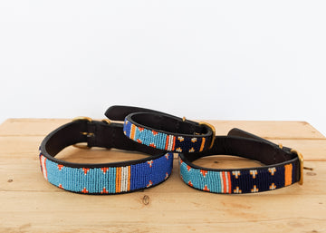 Fisi Dog Collar