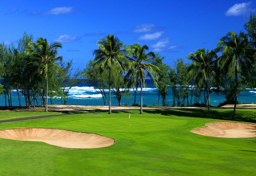A Satisfied Customer in Hawaii at Turtle Bay Golf Course