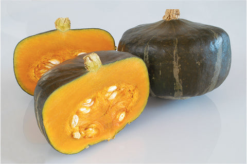 Johnny's Selected Seeds - Organic Squash - Green Wave Products, LLC