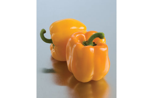 Johnny's Selected Seeds - Organic Peppers - Green Wave Products, LLC