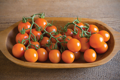 Johnny's Selected Seeds - Clementine Tomato