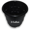 2 Gallon Round Planter RootMaker
