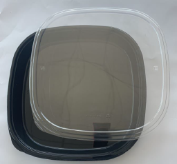 Restaurant Wholesale Disposable Party Trays Large (PET) 14.1x14.1x2 (100 Sets)