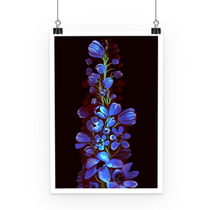 Birth Flowers Poster