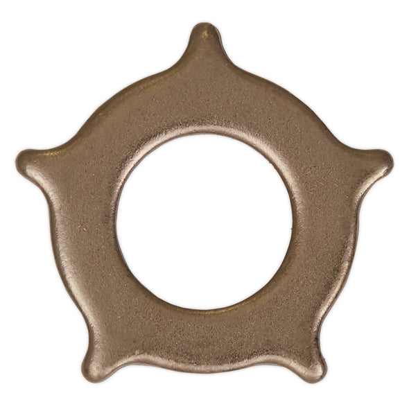 Sealey Star Washers for SR2000 Pack of 10