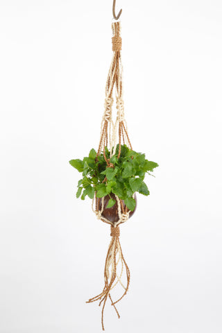 Coconut Hanging Planter - Natural and White