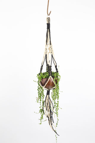 Coconut Hanging Planter - Black and White