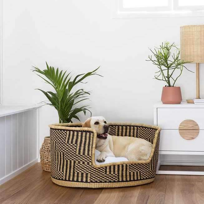 Dog Bed Bolga Baskets